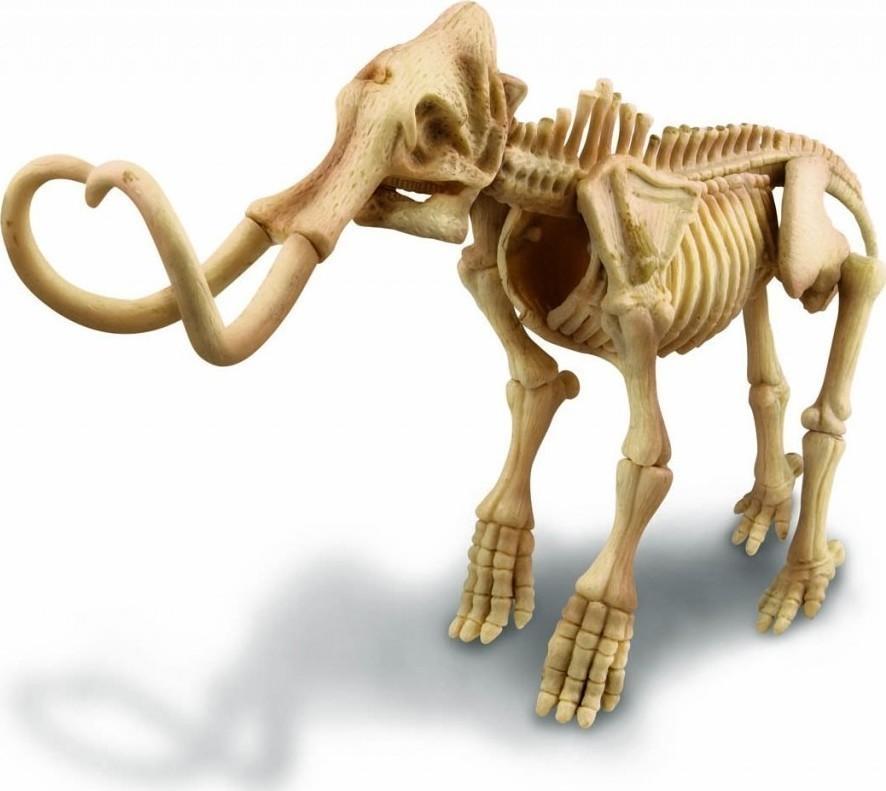 4M Μαμούθ Ανακαφή Σκελετού · 4M Μαμούθ Ανακαφή Σκελετού ... c6030e5c36185