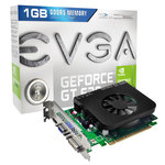 EVGA GeForce GT630 1GB Dual Slot