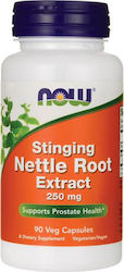 Now Foods Nettle Root Extract Vegetarian 250mg 90 φυτικές κάψουλες