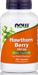 Now Foods Hawthorn Berry 540 mg 100 κάψουλες