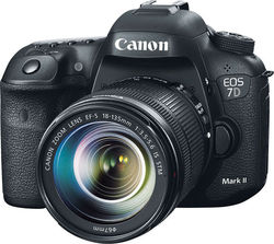 Canon EOS 7D Mark II Kit (18-135mm IS STM)