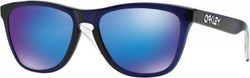 Oakley Frogskins Alpine Collection OO9013-74