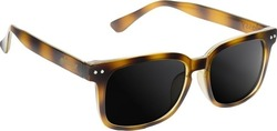 Glassy Sunhaters Lox Tortoise