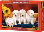 Puppies With Sunflower 1000pcs (C-101771) Castorland