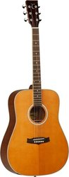 Tanglewood Evolution Dreadnought TW-28YCSN