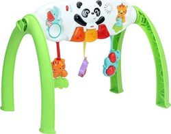 Fisher Price Grow-With-Me-Gym