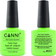 Canni Nail Art Color Coat 003 Neon Lime