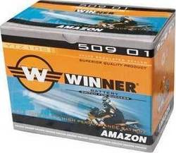 Winner Amazon 8.5Ah (YTZ10-S)