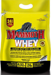 InterActive Nutrition Mammoth Whey 4530gr Σοκολάτα