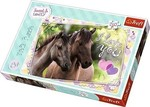 We Love Horses 260pcs (13213) Trefl