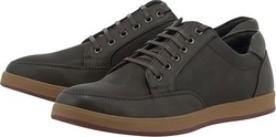 Levon B65LY Dark Brown