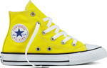 Converse All Star Chuck Taylor 355738C