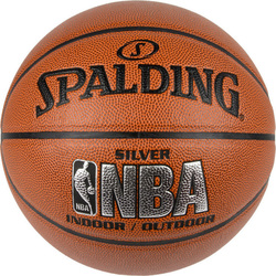 Spalding Indoor/outdoor 74-556Z1