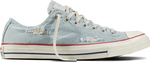 Converse Chuck Taylor All Star Destroyed Denim 156744C