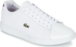 Lacoste 117 733SPW1025001