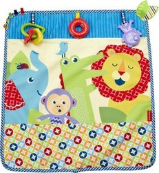 Fisher Price On - The - Go Activity Throw