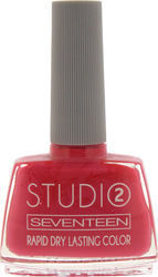 Seventeen Studio Rapid Dry Lasting Color 84