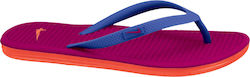 Nike Solarsoft Thong 2 555624-401