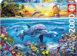 Family of Dolphins 2000pcs (17672) Educa