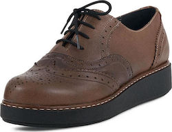 Γυναικεία Oxford Glee (GL2005 Tabac)