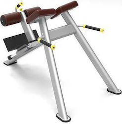 Impact Dynamic Adjustable Roman Bench 61A43