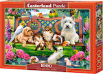 Pets In The Park 1000pcs (C-104406) Castorland