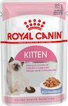 Royal Canin Kitten Jelly 85gr 12τμχ