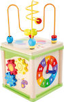 Small Foot Insect Motor Skills Training Cube
